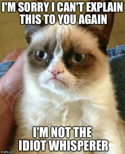 A Grumpy Cat meme Caption your own images or memes with our Meme Generator