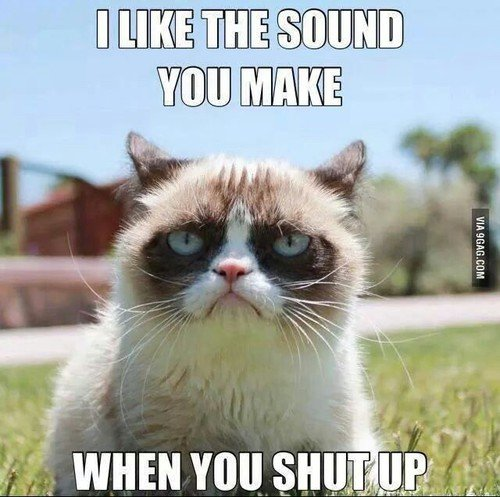 funny cat and shut up image