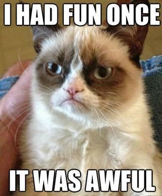 """Grumpy Cat meme """""""