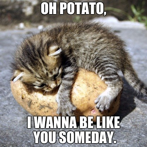 Oh Potato I Wanna Be Like You Someday