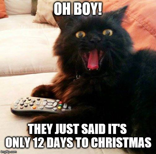ly 12 days left till Christmas