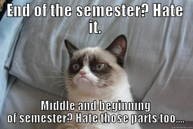 Grumpy Semester Cat END OF THE SEMESTER HATE IT MIDDLE AND BEGINNING OF