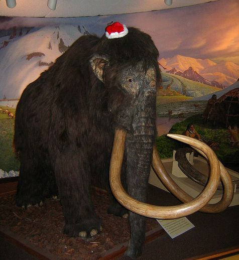 Woolly Mammoth Cloned Within Five Years We ll Believe It When We Ride It
