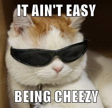 Funny meme of a cute cat wearing sunglasses with a quote from that famous Cheetos mercial