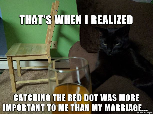 Cat Blues Red Dot Confidential