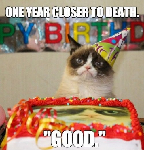 grumpy cat birthday and funny image
