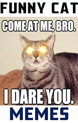 funny cat meme memes clean