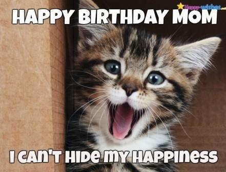 Happy Birthday Mom Meme Happy Birthday Mom Meme Birthday Memes Birthday Wishes Funny