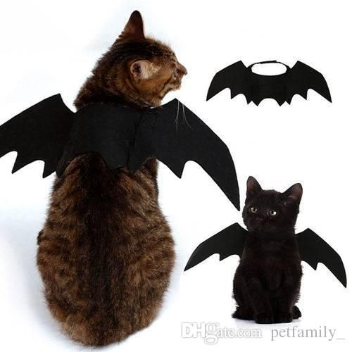 Bat Wings Vampire Black Cute Fancy Dress Up Halloween Pet Dog Cat Costume For Funny Cheap Cat Halloween Costumes Cheshire Cat Costumes From Petfamily