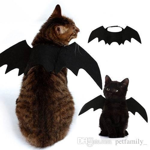 Bat Wings Vampire Black Cute Fancy Dress Up Halloween Pet Dog Cat Costume For Funny Cheap Cat Halloween Costumes Cheshire Cat Costumes From Petfamily