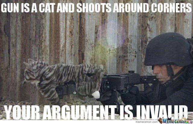cornershot cat gun