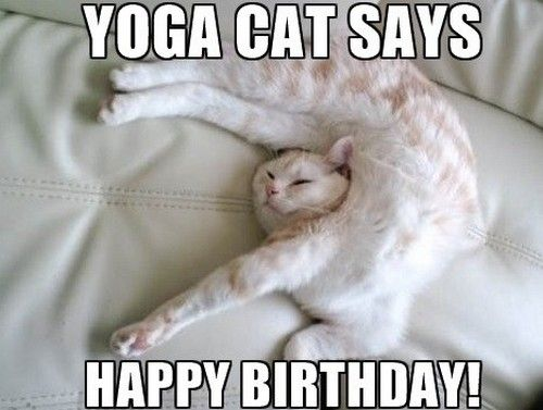 Yoga cat says Happy Birthday