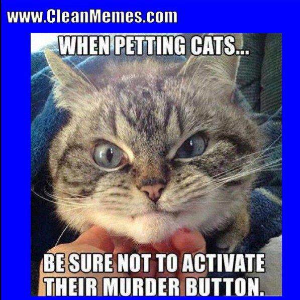 Clean Memes 01 24 2018