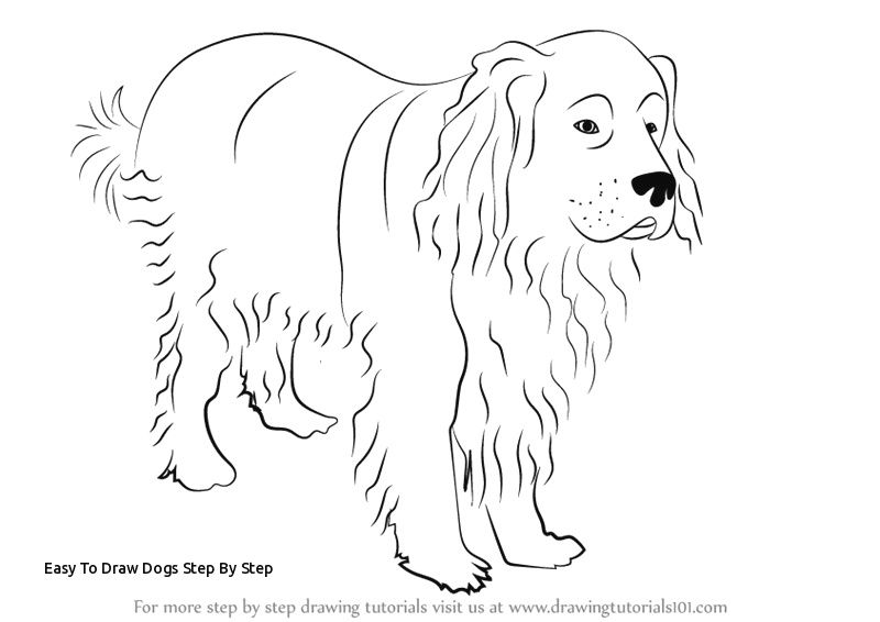 Easy Step by Step Drawing A Dog Easy to Draw Dogs Step by Step May