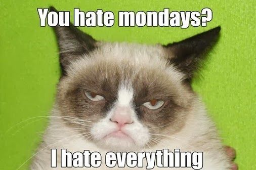 Grumpy Cat You hate Mondays I hate everything