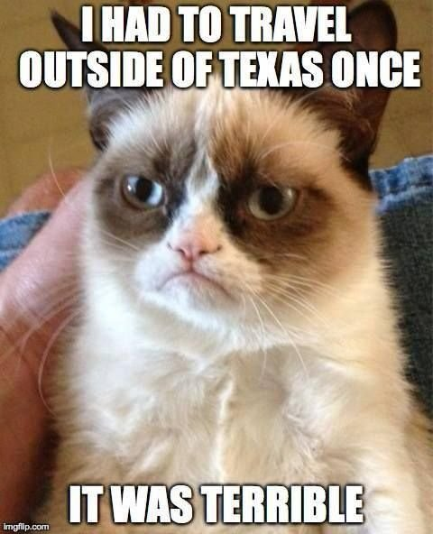 Sure I m not going to deny that I like Tarder Sauce the Grumpy Cat I should say that I appreciate the memes that sprang up around this cat s