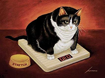 Stretch Kelley by Lowell Herrero Funny Fat Cat Diet Kitty Print Poster 18x24