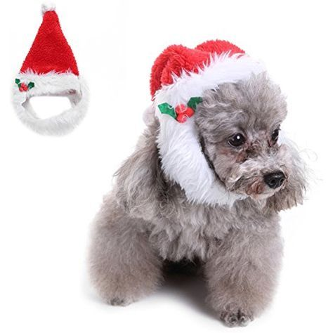 Pet Dogs Christmas Hat Big Beard Funny Costume for Small Dogs Cats Christmas Festival Fancy Dress Up Sized L You can more details by clicking on the