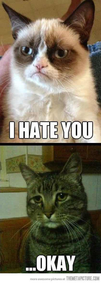 The love story of Grumpy Cat and Depressed Cat…
