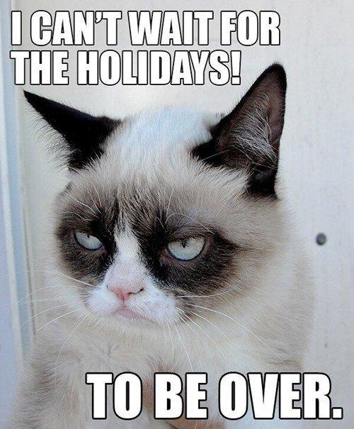 christmas thanksgiving cant wait Memes grumpy Grumpy Cat tard Cats holidays