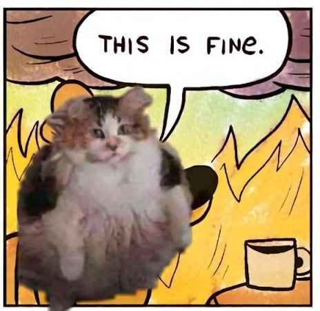 2018 11 03 bradshaw catsense thisisfineburning