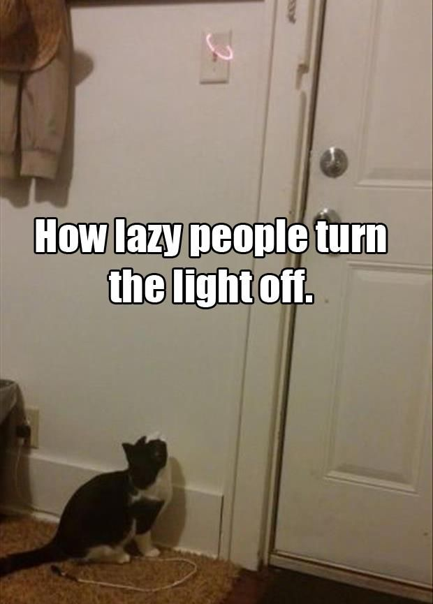 how lazy people turn the lights off