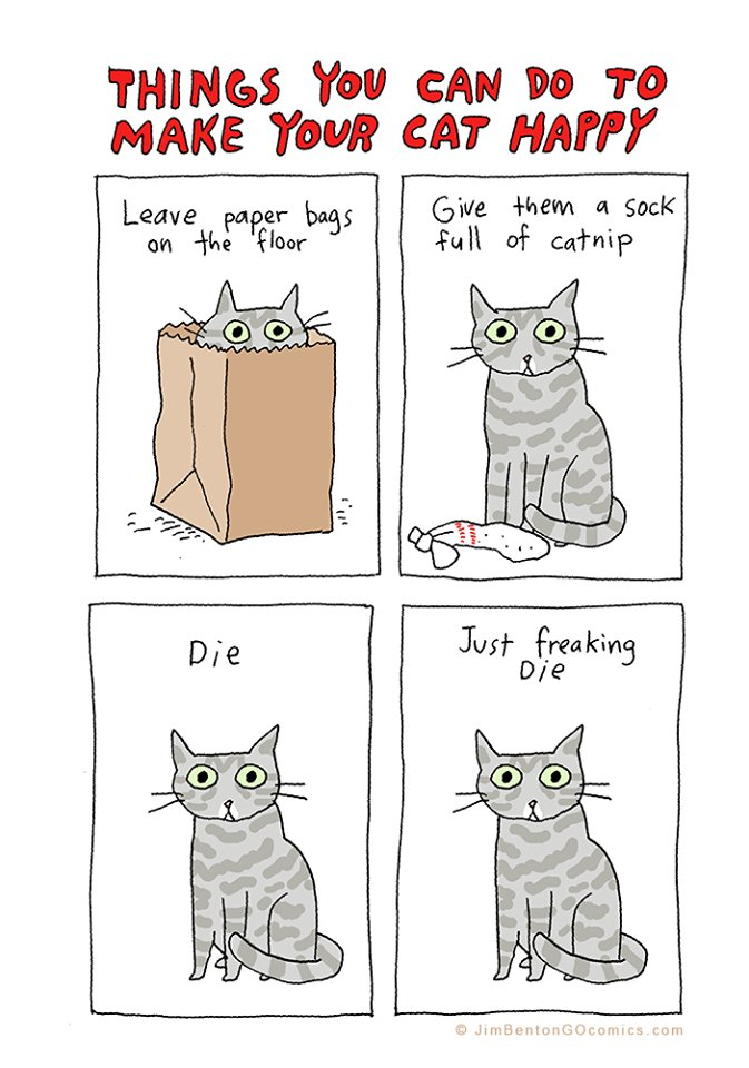 Things you can do to make your cat happy funny cartoon