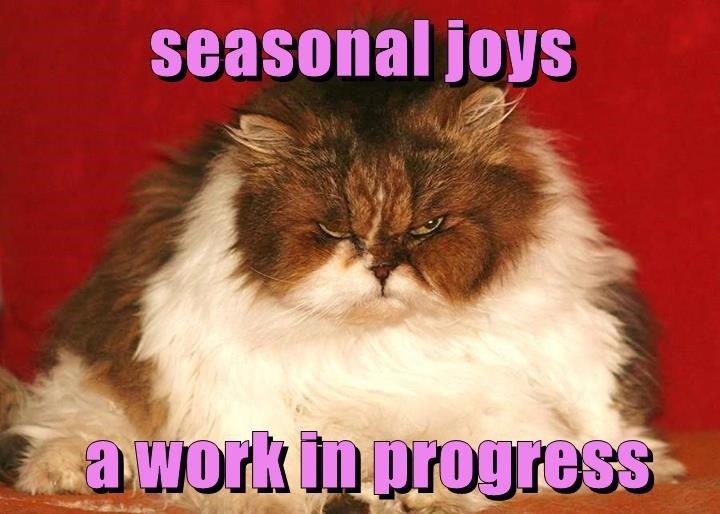 cat seasonal work joys progress caption