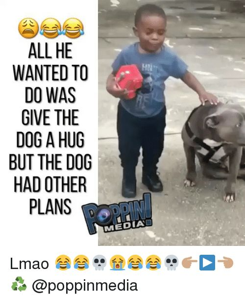 Lmao Memes and 🤖 ALL HE WANTED TO DO WAS GIVE THE DOG