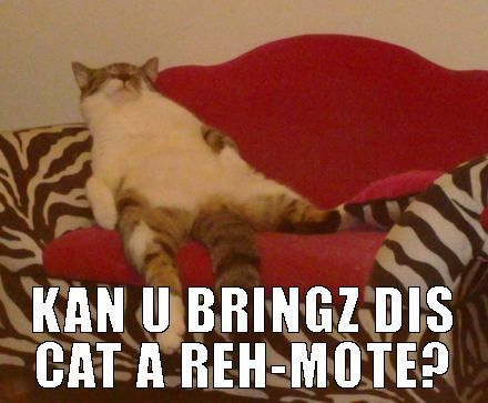 cat funny cats lazy couch potato cat potato lazy cat meme