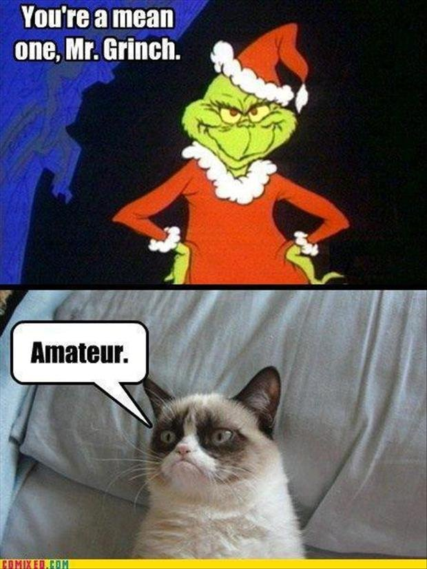 Christmas Grumpy Cat Meme Grinch