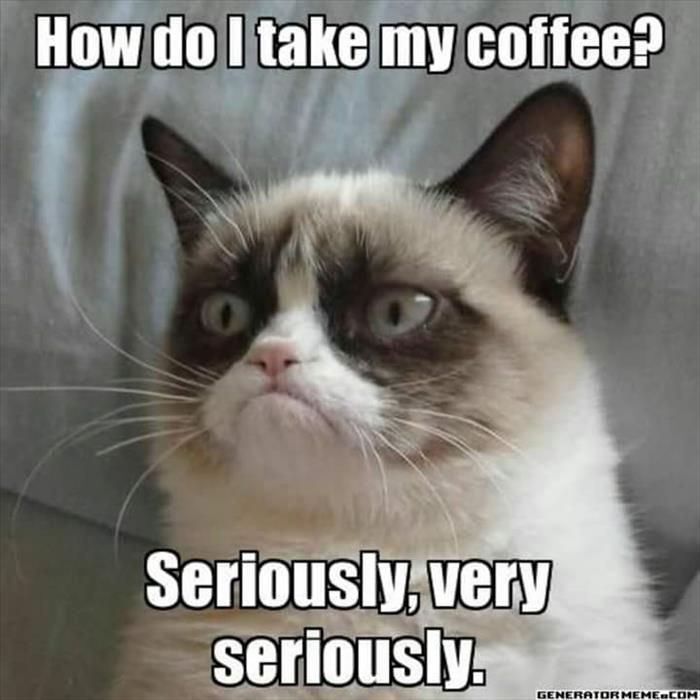 28 Memes That Will ly Be Funny If You re Hopelessly Addicted To Coffee