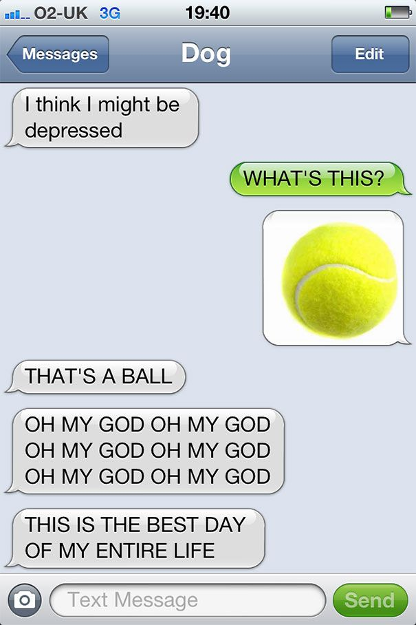 texts from dog 23