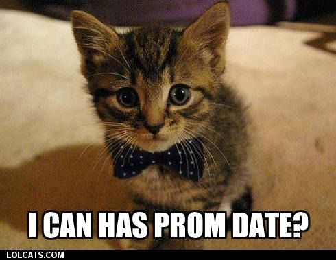 I can has prom date