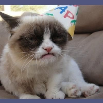 "Create meme ""miss you grumpy cat meme grumpy cat happy birthday """