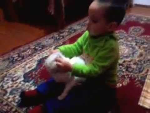 Funny cat and baby playing to her cute cat & sweet baby