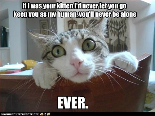 overly attached cat girlfriend justin bieber reference love Cats captions creepy