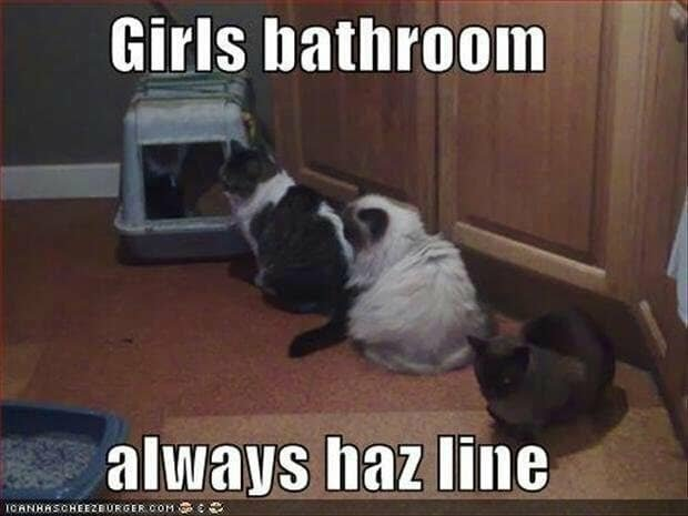 I really iz need bathroom