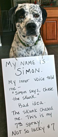 """My name is Simon my inner voice told me"