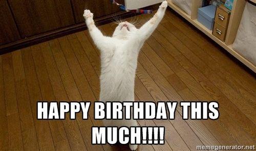 Happy Birthday Meme Cat 27