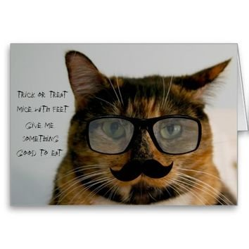 Funny Cat Halloween Card Cat in Disguise