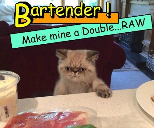 double bad day bartender Cats
