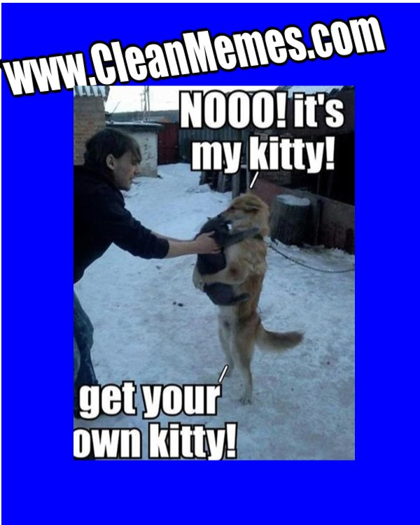Funny Memes 2013 12 28 huggy dog n cat