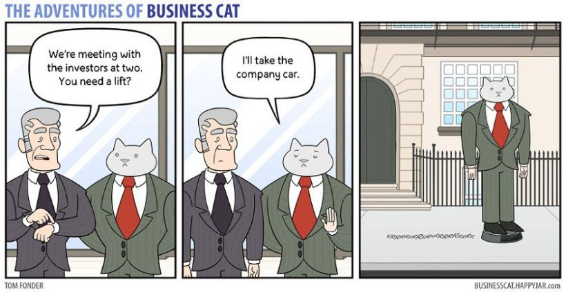 Two cartoon artists from Sheffield UK Tom Fonder and Rachel Robins have drawn a web ic named The Adventures of Business Cat that depicts the hilarious
