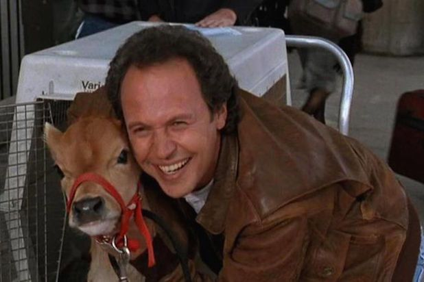 city slickers norman billy crystal