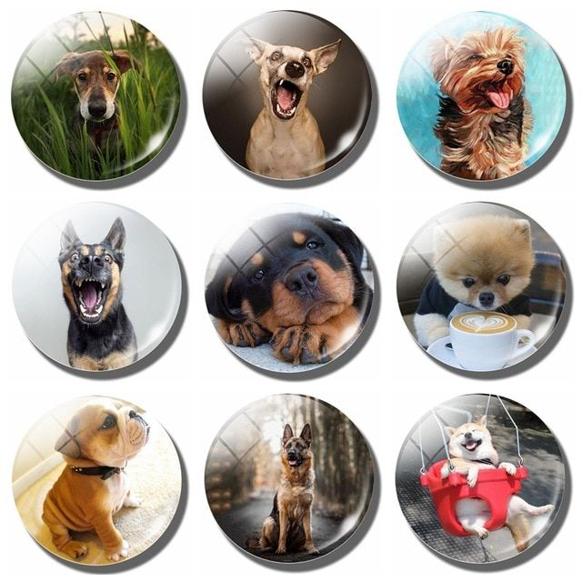 Lovely Cute Dog 30 MM Fridge Magnet Funny Dog Lover Gift Glass Dome Magnetic Refrigerator Stickers
