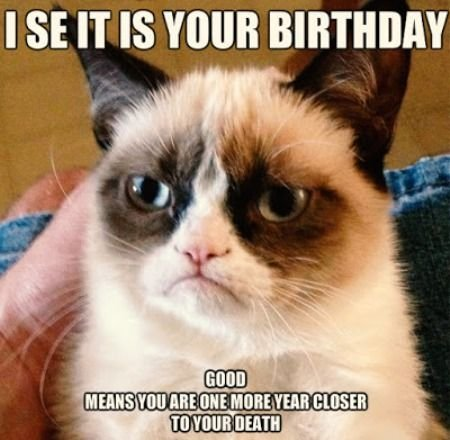 As The Quote Says Description Happy Birthday Funny
