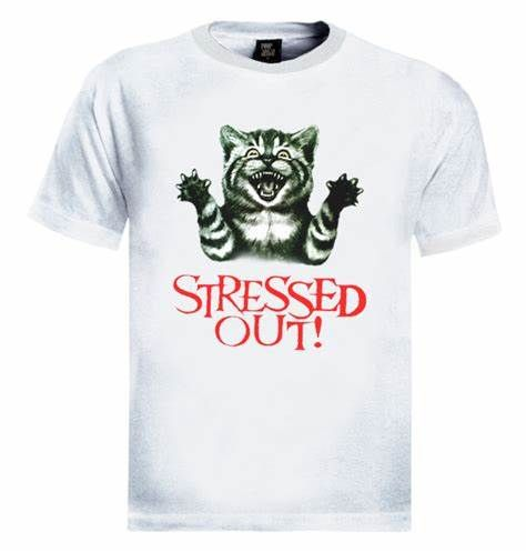 Stressed out cat T shirt Funny