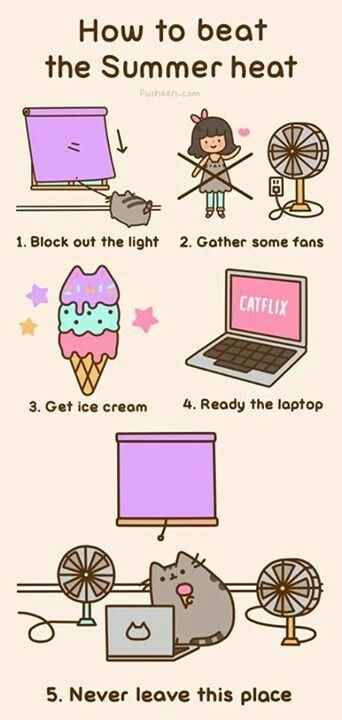 How to beat the summer heat Funny Cats Cute Cats I Love Cats