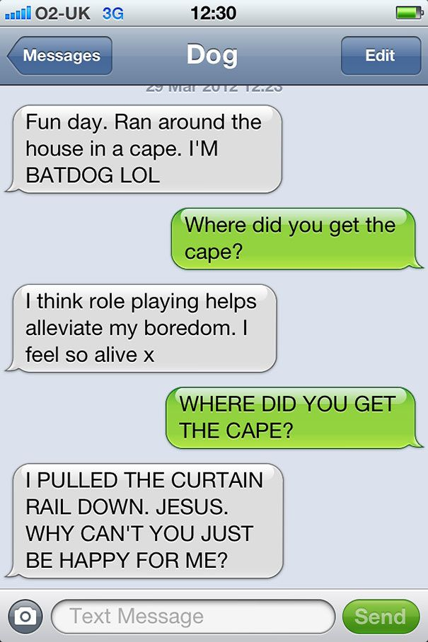 texts from dog 30